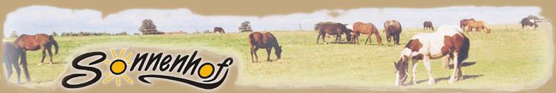 Pferde-Sonnenhof